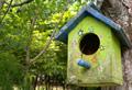 bird_house.jpg