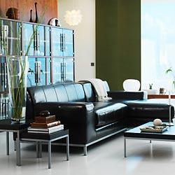 news_leather_sofas_250x250.jpg