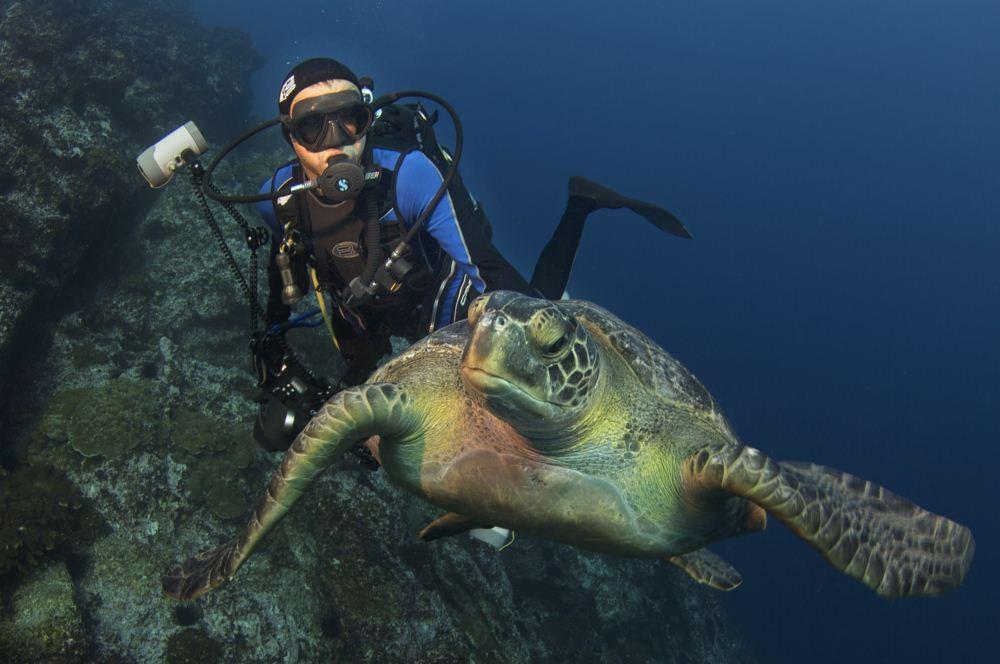 PROTECTION DES OCEANS : le programme PRISTINE SEAS de  NATIONAL GEOGRAPHIC
