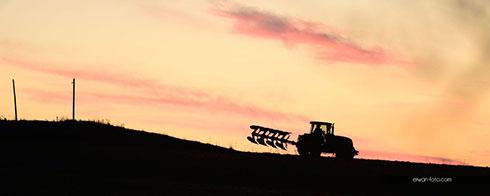 Agriculture en pays du Porzay, finistère, photo Erwan Pianezza