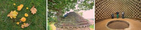 arbre-annee-bretagne