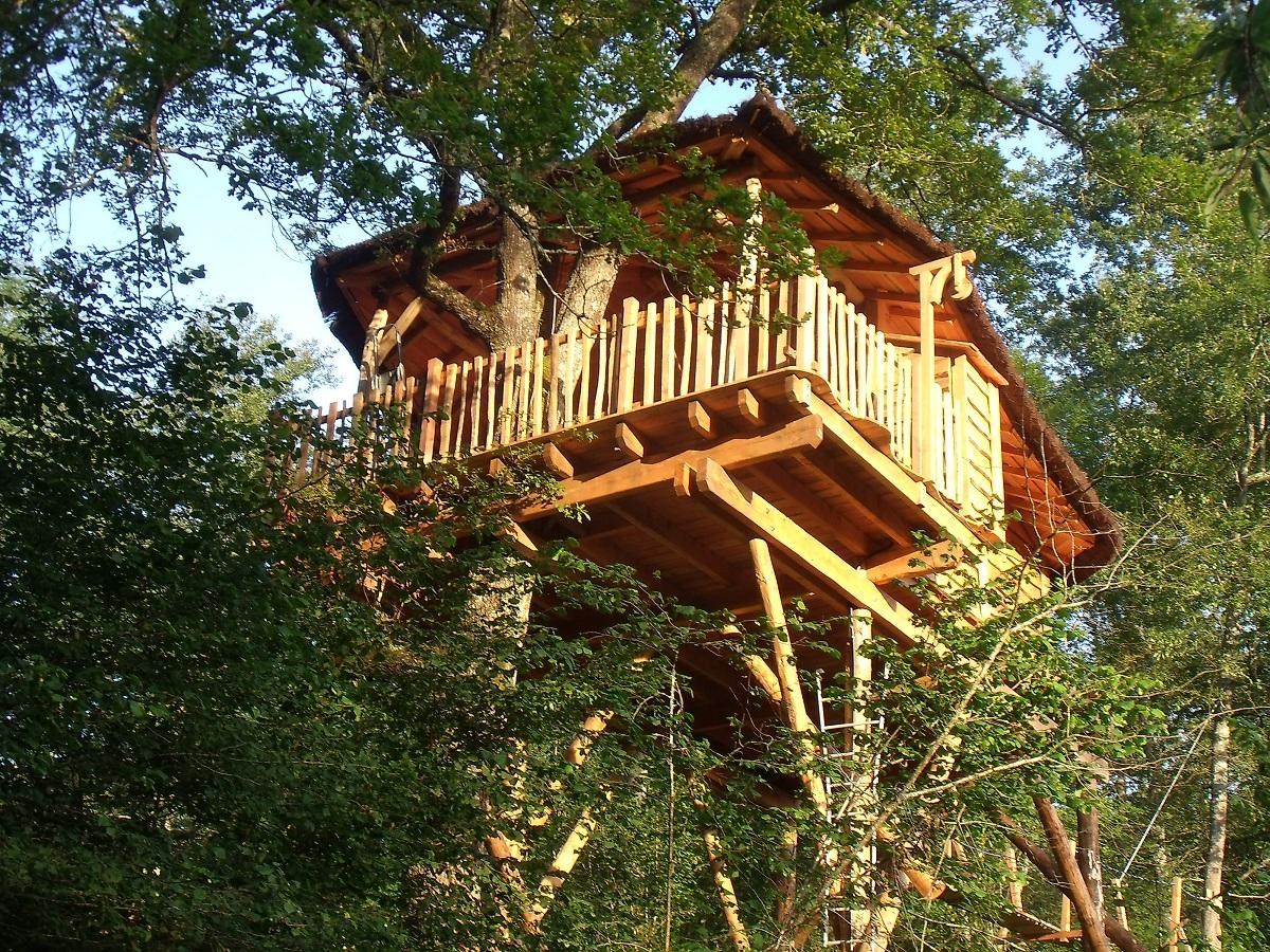 vivez haut perch le succ s des cabanes dans les arbres ecolopop. Black Bedroom Furniture Sets. Home Design Ideas