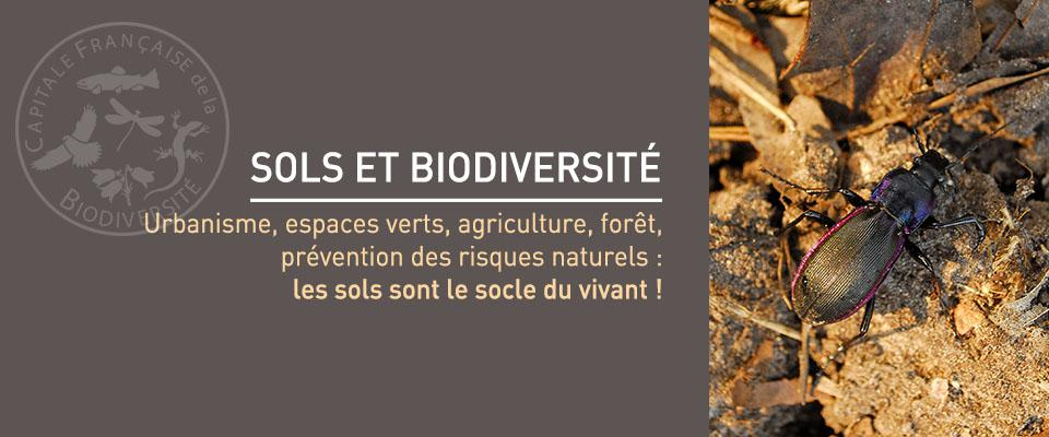 La Métropole Rouen Normandie élue «Meilleure intercommunalité pour la biodiversité 2016»