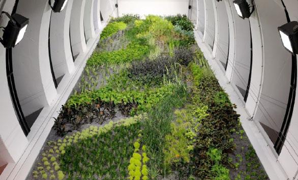 Lyon perraches : monument végétal pour parking souterrain