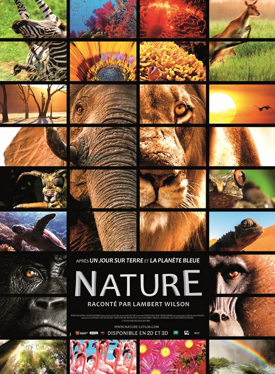 Nature – un film de Neil Nightingale et Patrick Morris