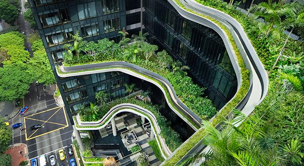 Les jardins suspendus de Singapour