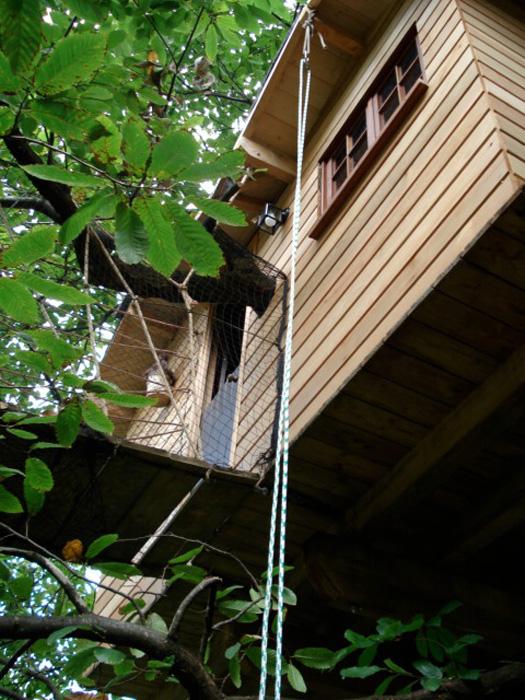 Vivez haut perché – le succès des cabanes dans les arbres