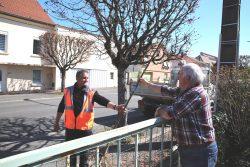 Cusset (Allier) / Reboisement : pendant le confinement, cette ville distribue des arbres aux habitants