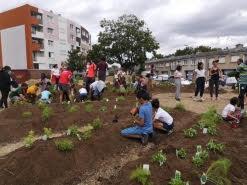 Stains (93) : Création d'un jardin en permaculture au coeur des banlieues