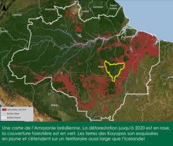 Préserver 100000 km2 de forêt en Amazonie avec l'aide des peuples locaux